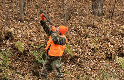 Autumn hunter. Hunter aiming his weapon in the autumn woods Stock Image