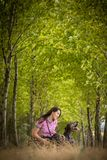 Autumn hunting season. Hunting. stock images