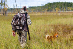 Autumn hunting on the swamp Royalty Free Stock Images
