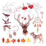 Autumn hunting vector design set. All elements  and edit Stock Photography