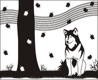Autumn husky. Black and white illustration of autumn husky Royalty Free Stock Images
