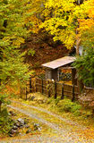Autumn Hut. Path through an autumn forest with a hut Royalty Free Stock Image
