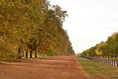 Autumn Hyde Park London Photo libre de droits