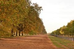 Autumn Hyde Park London Royalty Free Stock Photo