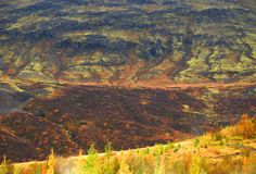 Autumn Icelandic landskap Arkivfoto
