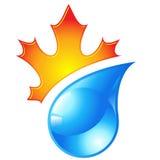 Autumn icon. Vector illustration of autumn icon royalty free illustration