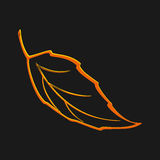 Autumn icon . Fall leaf. Nature symbol vector collection isolated on black background. Smooth shape. Plain flat style colors.Vecto Stock Image