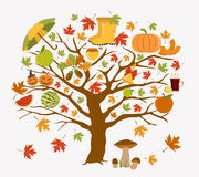 Autumn icon set. Halloween and Thanksgiving day. Flat design Royalty Free Stock Image