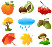 Autumn icons. Set, illustration Vector Illustration
