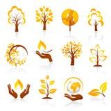 Autumn Icons Royalty-vrije Stock Foto's