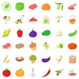 Autumn icons set, isometric style Stock Image