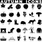 Autumn icons set vector Stock Photo