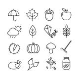 Autumn Icons Thin Lines. Collection of autumn icons - autumn symbols and activities. Thin lines style Royalty Free Stock Image