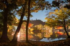 Autumn illumination stock photo