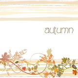 Autumn illustrated background Stock Photography