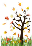 Autumn illustration Royalty Free Stock Images