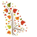 Autumn illustration Royalty Free Stock Photography