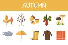 Autumn illustration set Royalty Free Stock Photos
