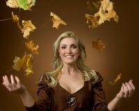 Autumn impression Stock Photo