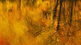Autumn Impression Stock Afbeeldingen