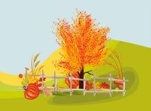 Autumn impression Stock Image