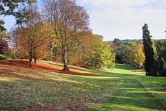 Autumn In An English Park Stock Photos