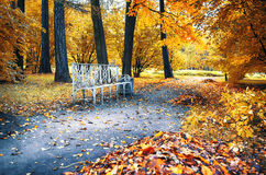 Free Autumn In City Park Stock Image - 34648581