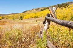 Autumn In Colorado Stock Photo