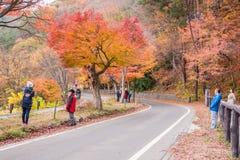 Free Autumn In Kawaguchiko Royalty Free Stock Photos - 76287718