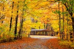 Free Autumn In Michigan Royalty Free Stock Image - 72626796