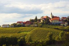 Free Autumn In Vineyards, Slovenia Stock Images - 160660334