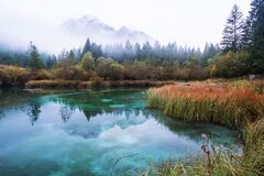Free Autumn In Zelenci Nature Reserve Royalty Free Stock Images - 183345899