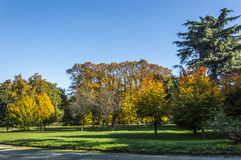 Autumn in Indro Montanelli's Park Royalty Free Stock Photography