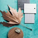 Autumn interior design theme flat lay Stock Image