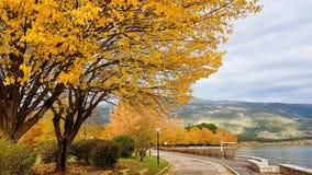 Autumn in Ioannina city Epirus Greece Stock Photos