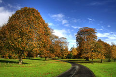 Autumn in Ireland Royalty Free Stock Photos
