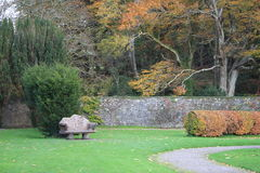 Autumn in Ireland. A park scene in the wonderful and colorful irish autumn Royalty Free Stock Photos