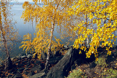 Autumn on the island. Stock Photography