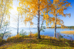 Autumn island and lake Stock Photo