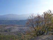 Autumn italian landscape in trentino Stock Photo
