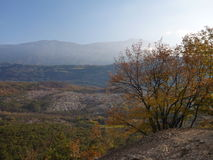 Autumn italian landscape in trentino Stock Images