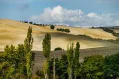 Autumn in Italy. Yellow plowed hills of Tuscany with interesting shadows and lines. Agricultural concept landscape royalty free stock images