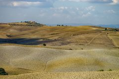 Autumn in Italy. Yellow plowed hills of Tuscany with interesting shadows and lines. Agricultural concept landscape stock images