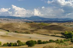 Autumn in Italy. Yellow plowed hills of Tuscany with interesting shadows and lines. Agricultural concept landscape royalty free stock photo
