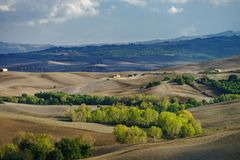Autumn in Italy. Yellow plowed hills of Tuscany with interesting shadows and lines. Agricultural concept landscape stock photos