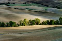 Autumn in Italy. Yellow plowed hills of Tuscany with interesting shadows and lines. Agricultural concept landscape royalty free stock image