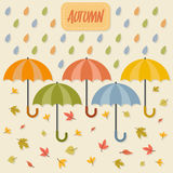 Autumn items Royalty Free Stock Photos