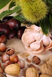 Autumn with its fruits. Hazelnuts from Piedmont with nuts and mushrooms and chestnuts hedgehog on jute cloth background Royalty Free Stock Image