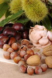 Autumn with its fruits. Hazelnuts from Piedmont with nuts and mushrooms and chestnuts hedgehog on jute cloth background Royalty Free Stock Photography