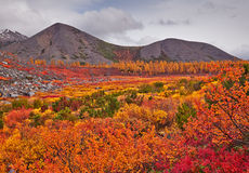 Autumn. Jack London's lake. The Magadan area. Kolyma Stock Photography